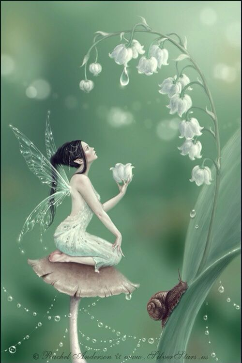 Fairy Sitting On A Mushroom Holding A Lily Of The Valley Flower Snail Art Fairy Art Lily Of The Valley Fairy Pictures