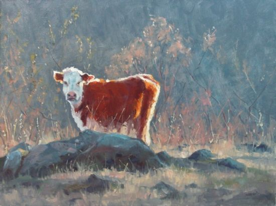 Last Light By Robert Sandidge Oil 30 X 40 Cow Art Bull Art
