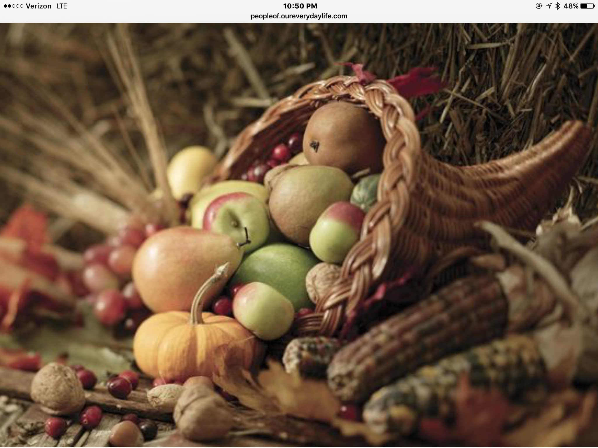 Pin by Susan Darby on Liturgy Thanksgiving Fruit