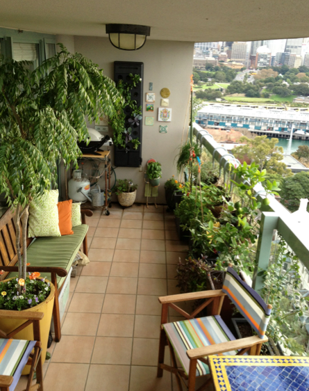 Growing Vegetables On A Tiny 13th Floor Apartment Balcony