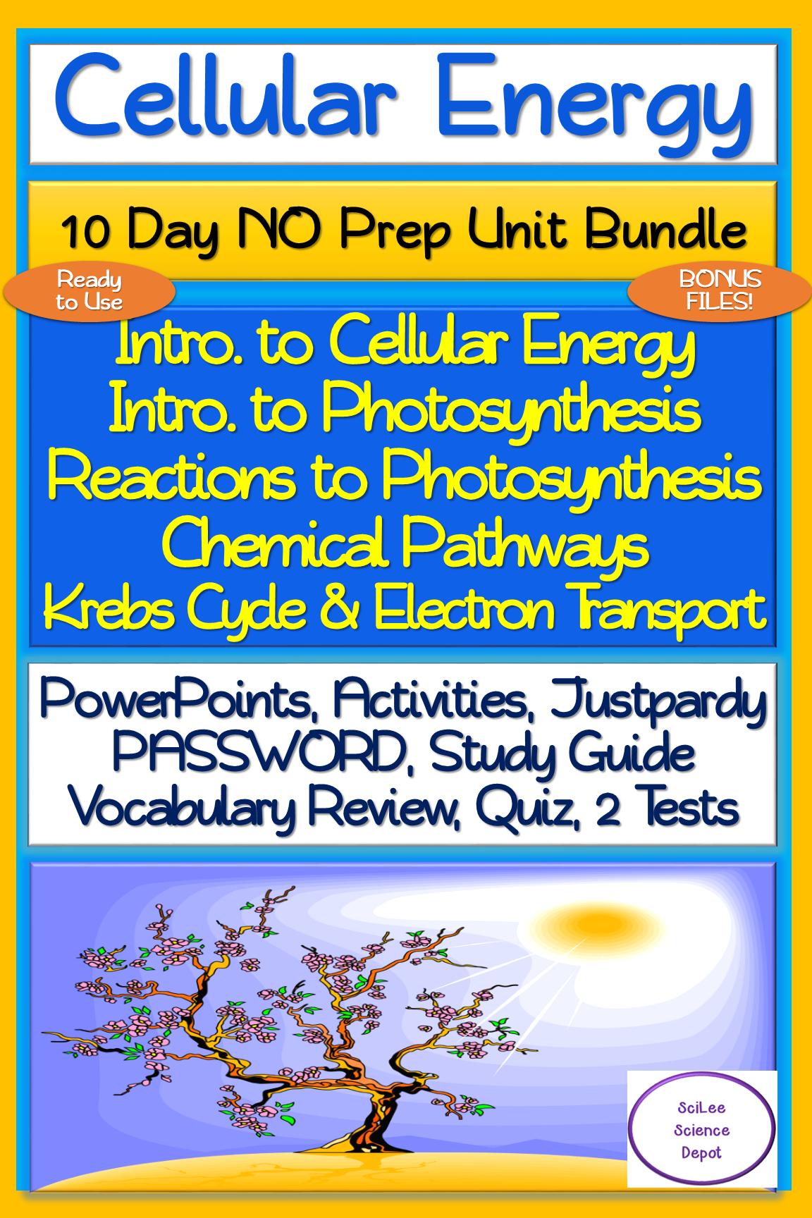 Cellular Energy 10 Day No Prep Unit Bundle Lessons