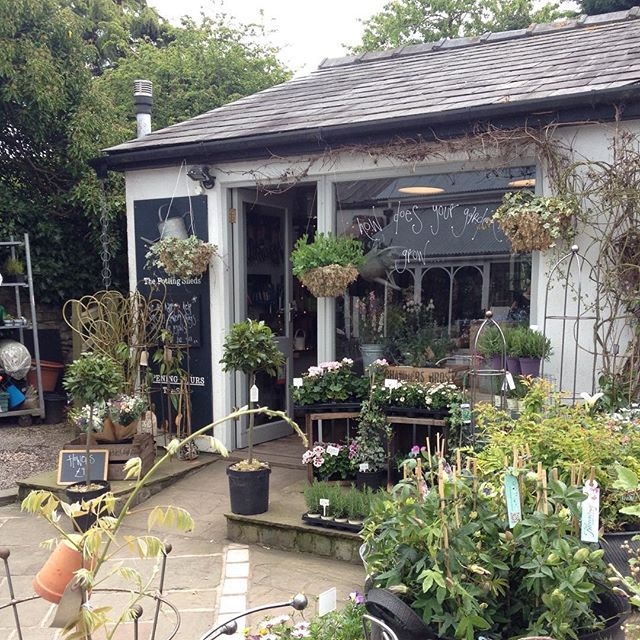 Pretty Potting Sheds today xx