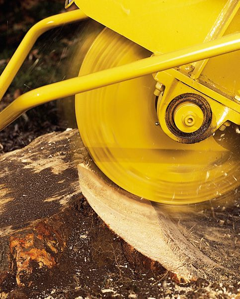 How To Use A Stump Grinder To Rid Your Yard Of Tree Stumps Stump Grinder Tree Stump Grinder Tree Stump