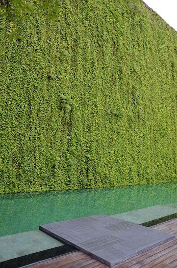 die besten 25 vertikal garden ideen auf pinterest. Black Bedroom Furniture Sets. Home Design Ideas