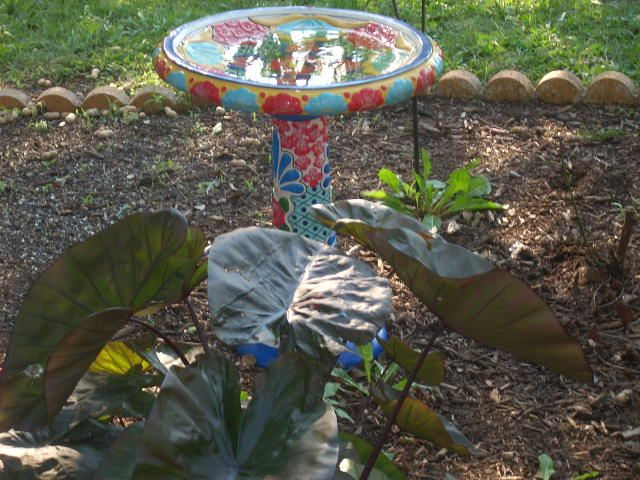 Flower Beds and Bird Feeders