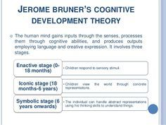 bruner cognitive development theory google search