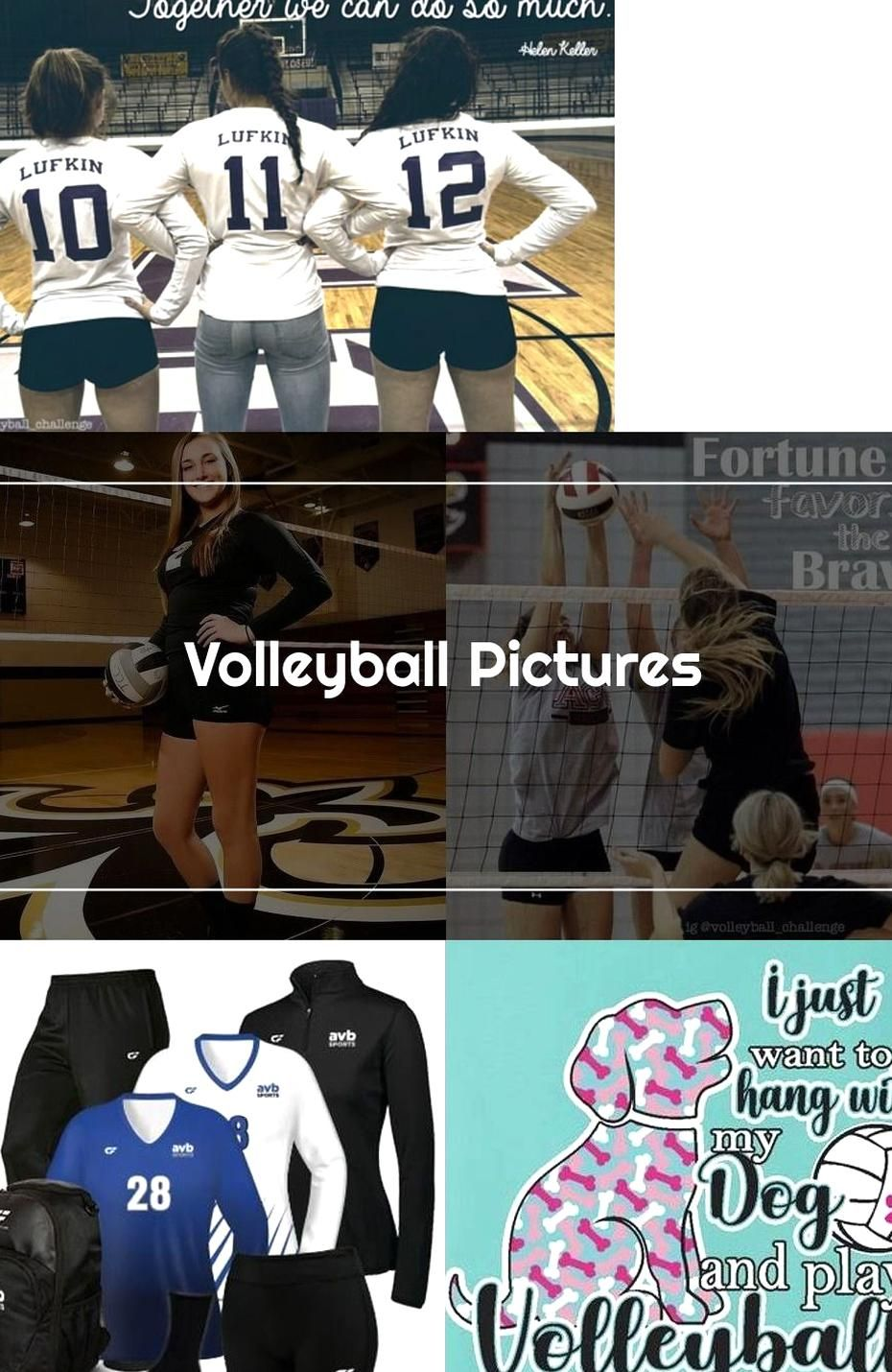 Volleyball Pictures The Athlete Company In 2020 Volleyball Pictures Pictures Volleyball
