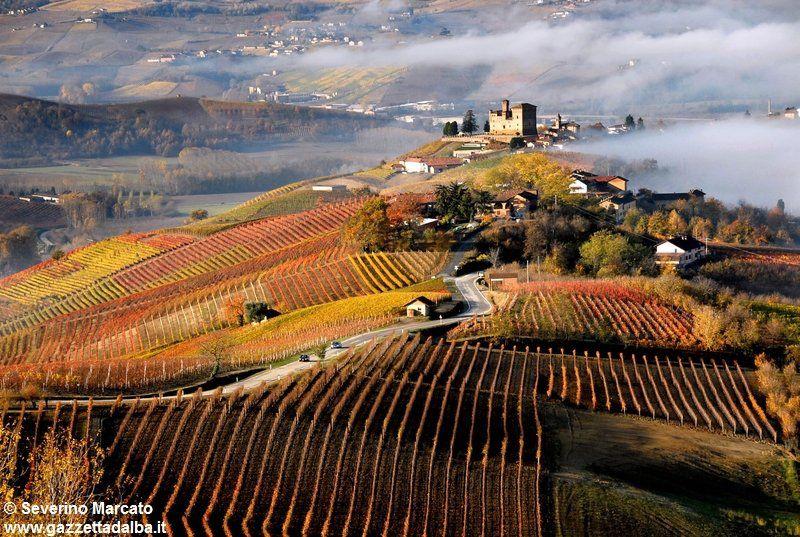 Le Langhe  (Italy) - Castello di Grinzane Cavour