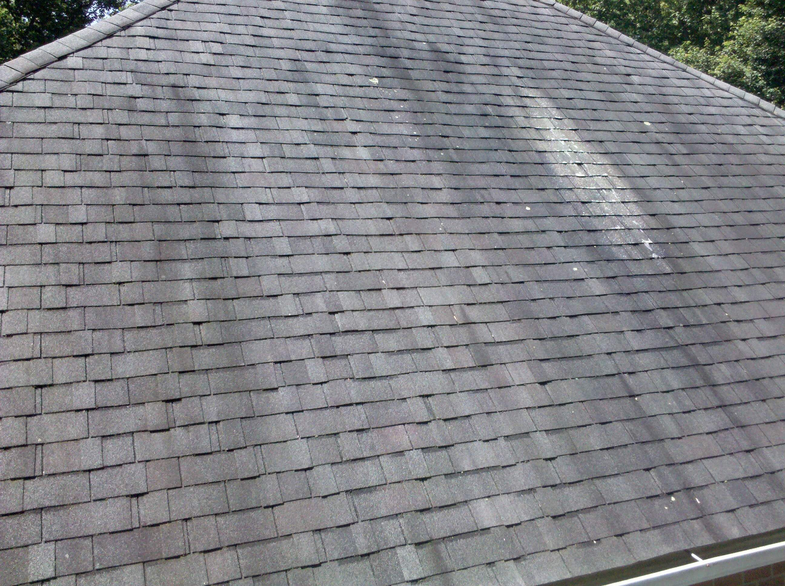 Best Way To Clean Algae From Roof Shingles Di 2020 Tips