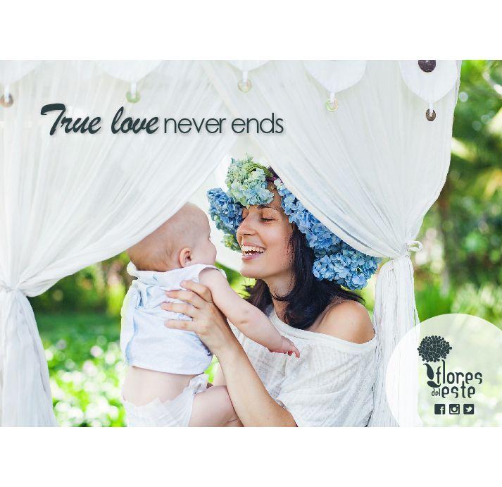 #love #hydrangeas #flowers #Colombia #FDE