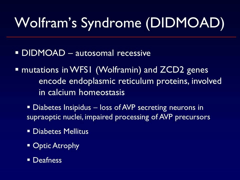 Wolframs Syndrome Didmoad Diabetes Insipidus Syndrome Neurons