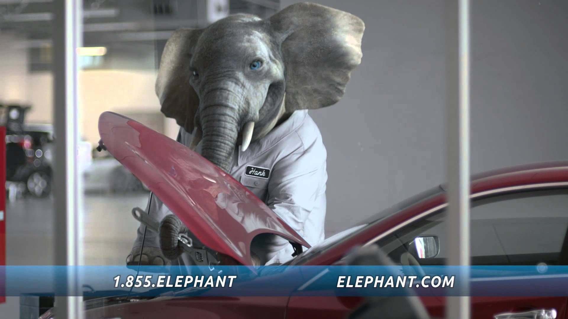 Elephant Auto Insurance Quote Mesmerizing This Elephant Insurance Commercial Was Shot In The Allsteel Dallas . Design Ideas