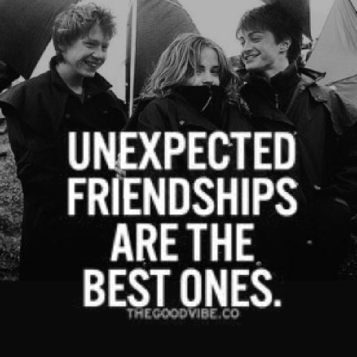 Harry Potter Quotes About Friendship The Golden Trio The Best Friends  Quotes  Pinterest  Harry