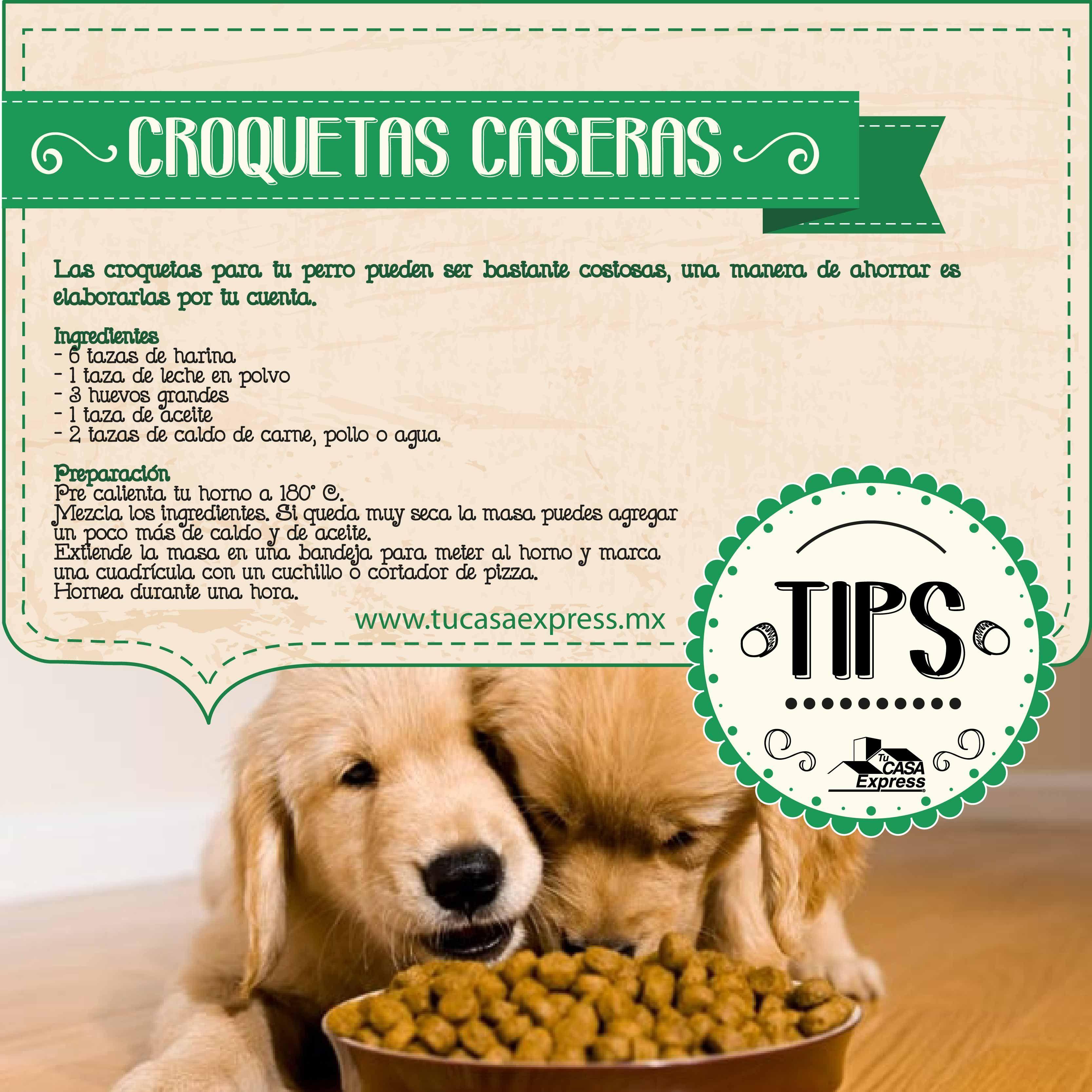 Las Croquetas Alimento Para Tu Perro Pueden Ser Bastante