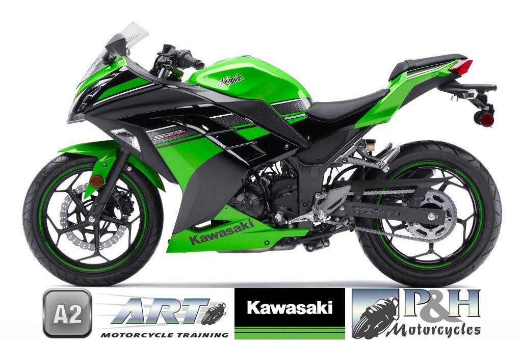 2014 Kawasaki Ninja 300 Special Ride From Age 19 Once