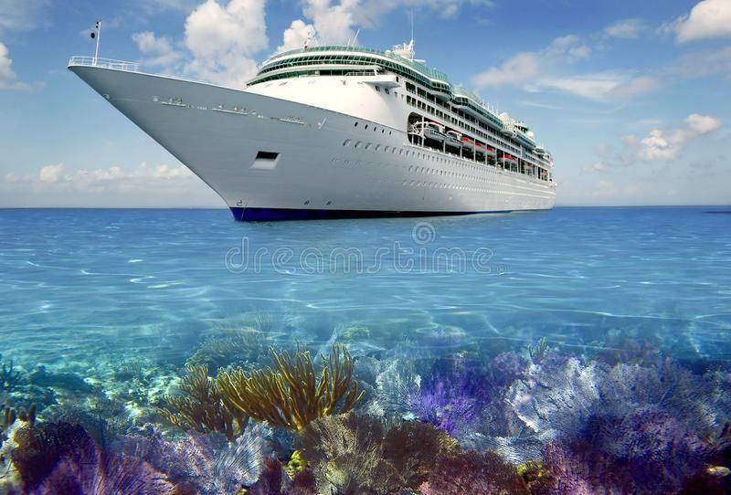 Caribbean Reef View With Cuise Vacation Boat Travel Affiliate View Reef Caribbean Cuise Travel A Cruise Travel World Cruise Scandinavian Cruises