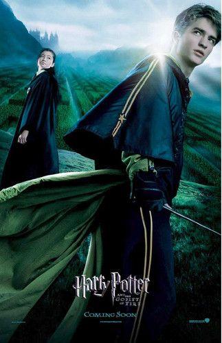 Harry Potter Photo Hp Poster Harry Potter Goblet Harry Potter Movies Harry Potter Films