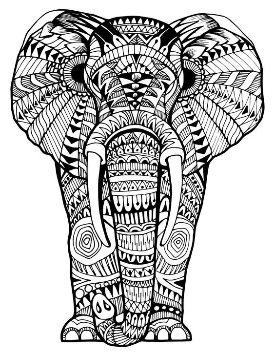 Elephant Zentangle Animal Coloring Books Coloring Pictures Of