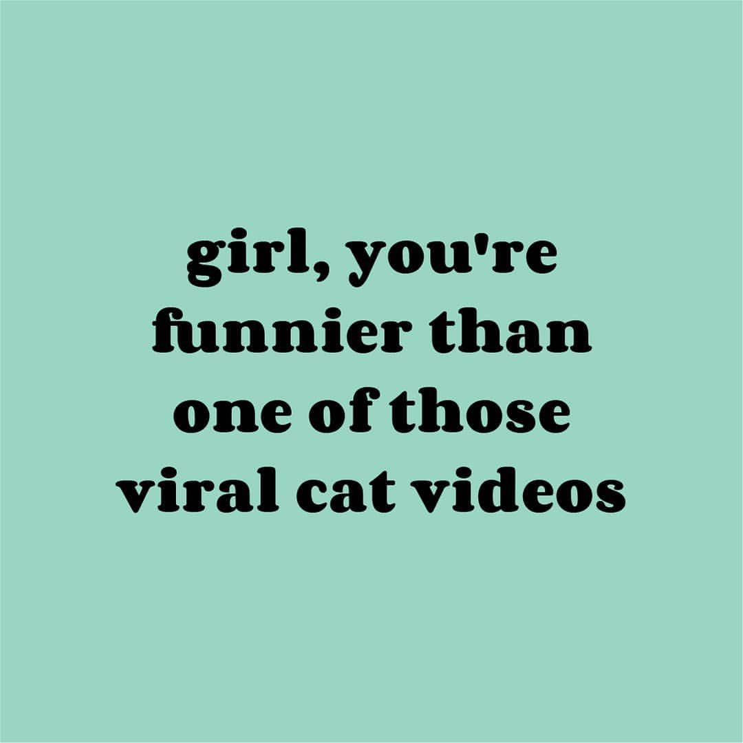 tag your friend that makes you laugh harder than watching a cat get stuck  in a tiny box