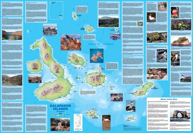 Galapagos wildlife map - Bing Images | Places on my list ...