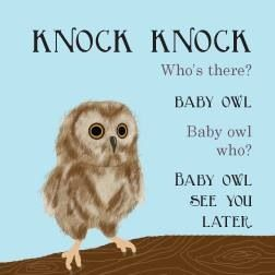 Baby Owl See You Later Baby Owls Owl Images Funny Owls