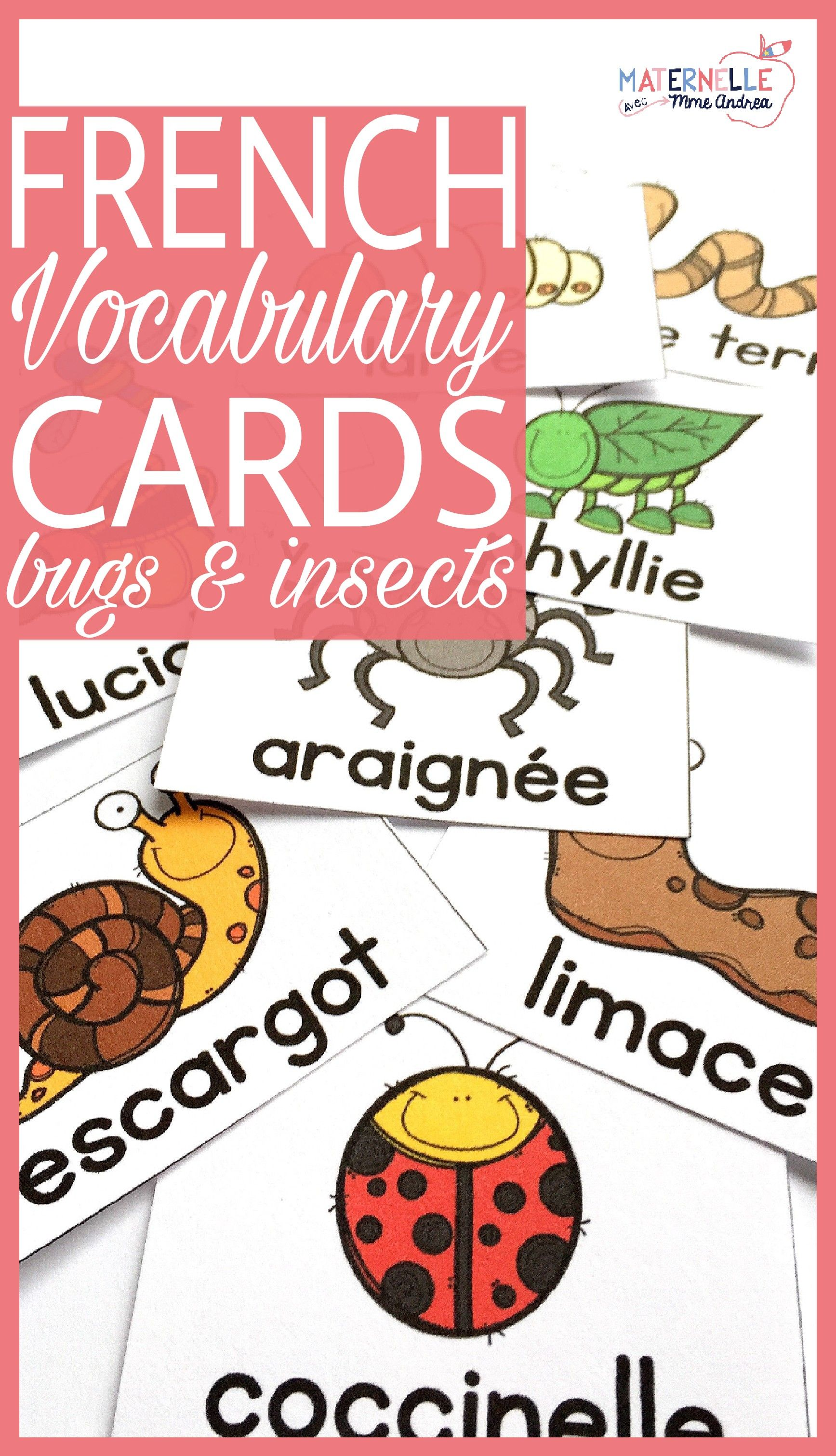 French Bugs Amp Insects Vocabulary Cards Vocabulaire