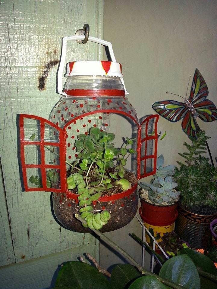 Plantas en botellas resicladas