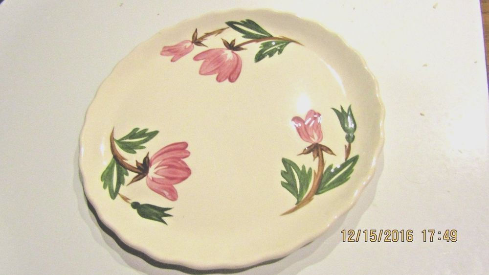Vintage Canonsburg Pottery  American Beauty  9  Dinner Plate Hand Painted USA & Vintage Canonsburg Pottery