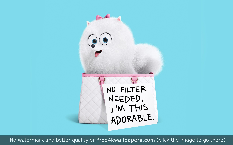 Gidget The Secret Life Of Pets Hd Wallpaper Secret Life Of Pets