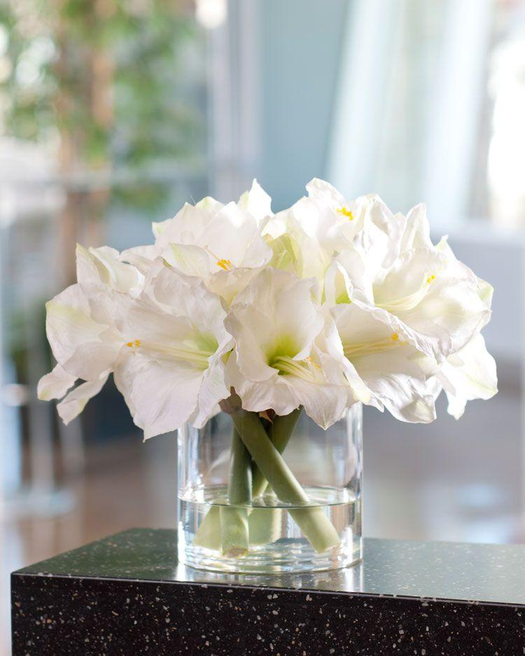 Amaryllis centerpiece to remind me of my wedding bouquet for Bouquet amaryllis