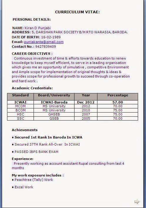 beautiful cv Sample Template Example ofExcellent Curriculum Vitae ...