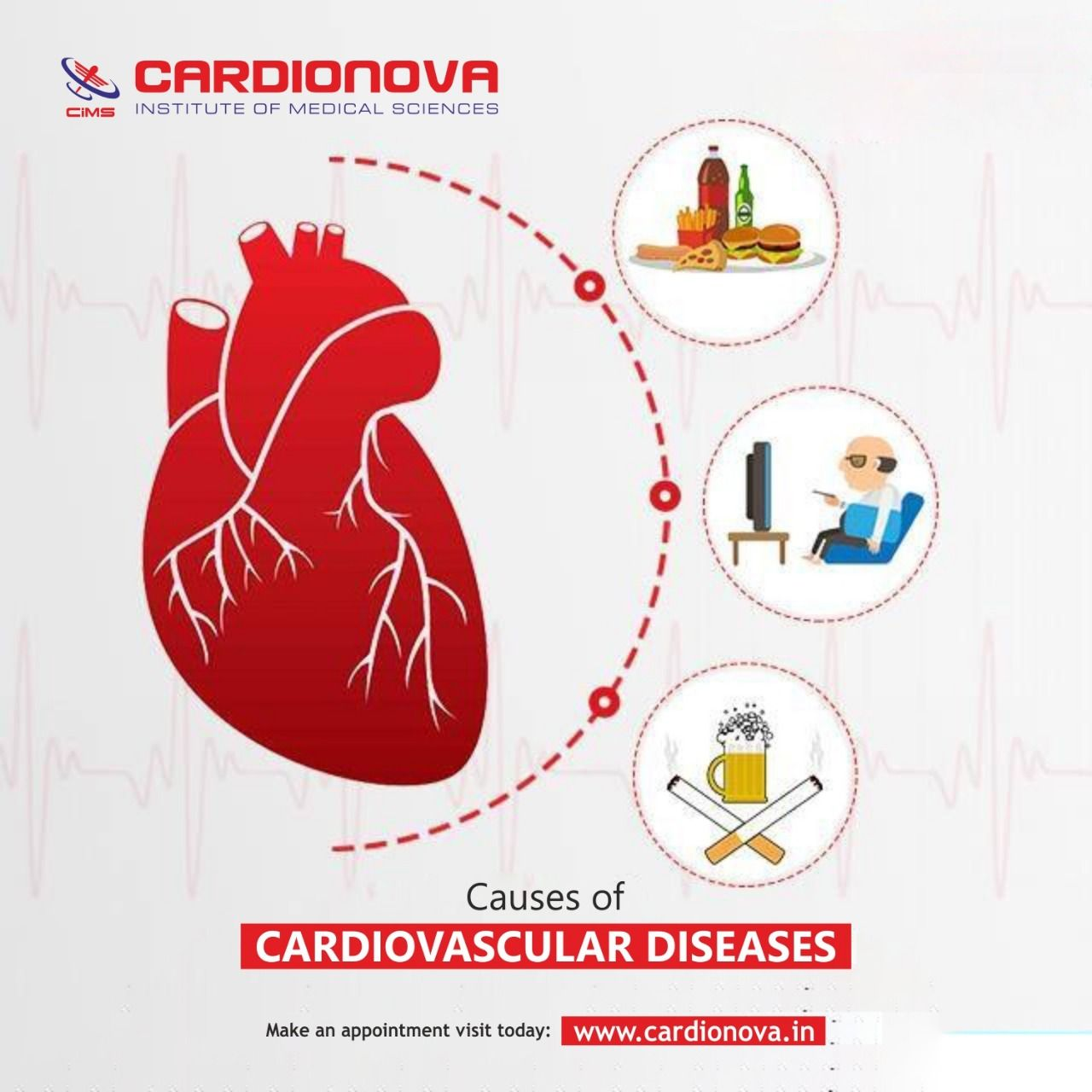 What Are The Top Causes Of Cardiovascular Diseases