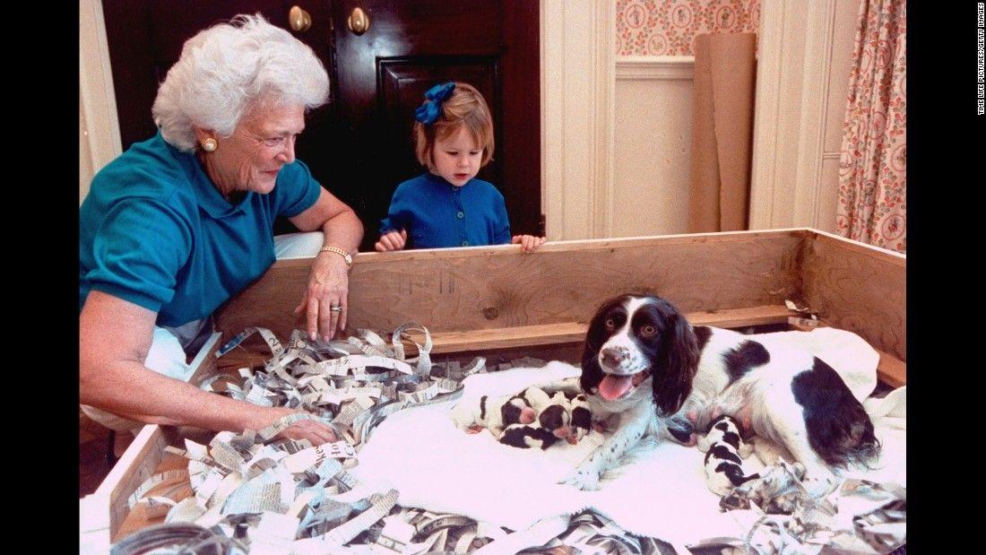 The Life Of Former First Lady Barbara Bush Barbara Bush