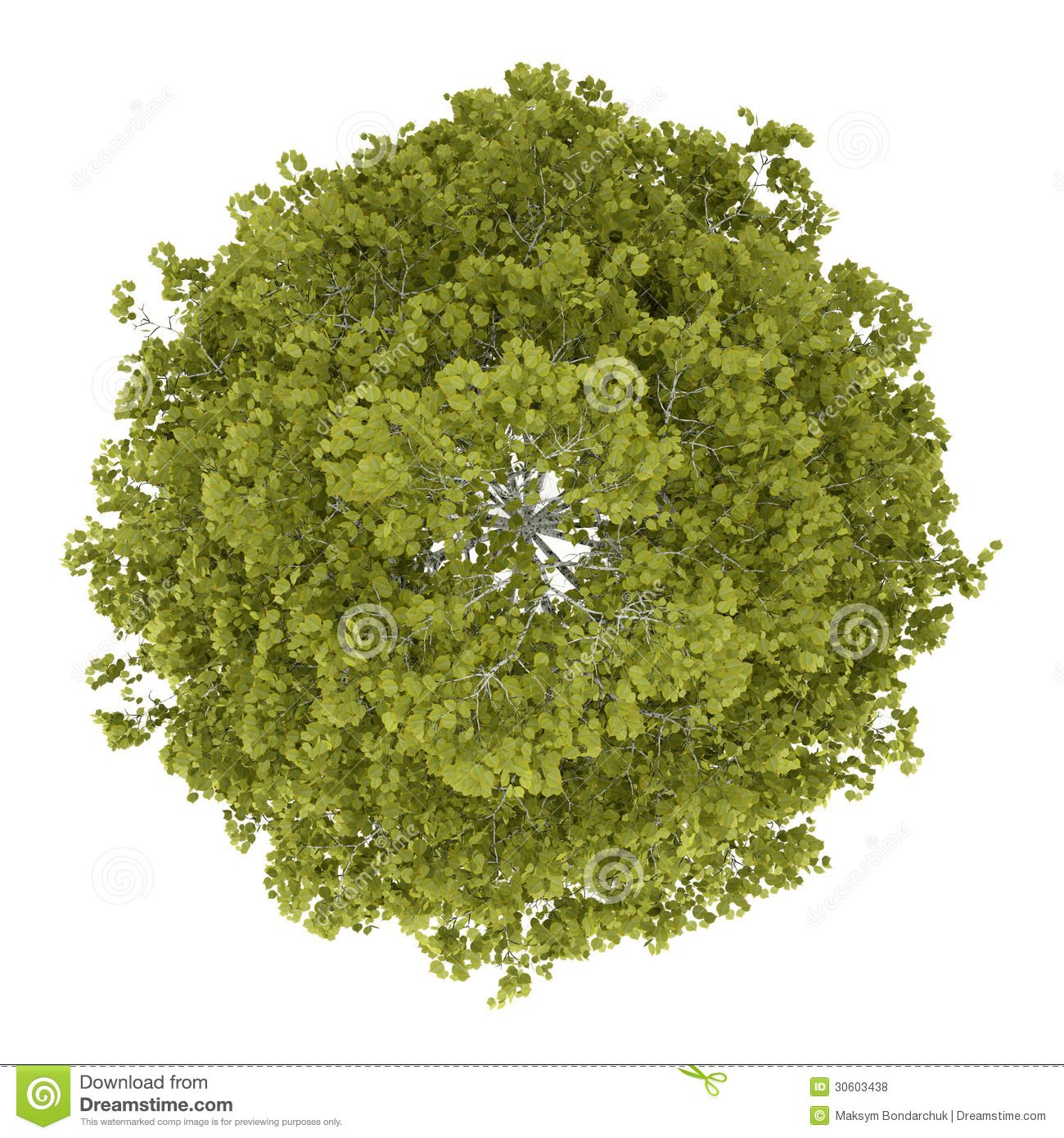 shrub oak latin dating site Ethereal derives from the latin aetherius,  a spectral residue or site memory, thus not really alive in that  son of an ethereal being according to agrippa.