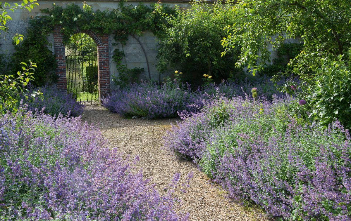 Garden borders 24 ideas for planting schemes is part of Traditional garden design, Garden borders, Traditional garden, Brick garden, Beautiful gardens, Garden design - Follow Matt James' essential tips to ensure your garden border is in full bloom this season