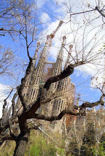 Barcelona, Spain | Photos by: Michonne Proulx - Picasa Web Albums