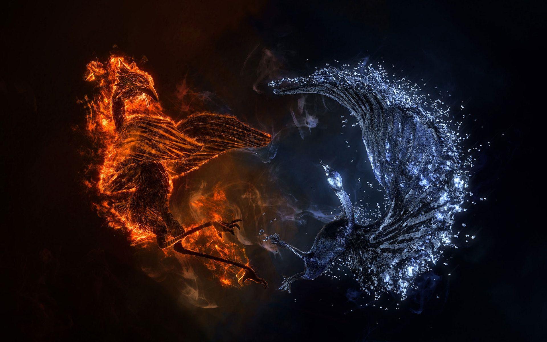 Fire And Water Wallpaper Phoenix Wallpaper Fire Art Water Art 1080p fire and water wallpaper hd
