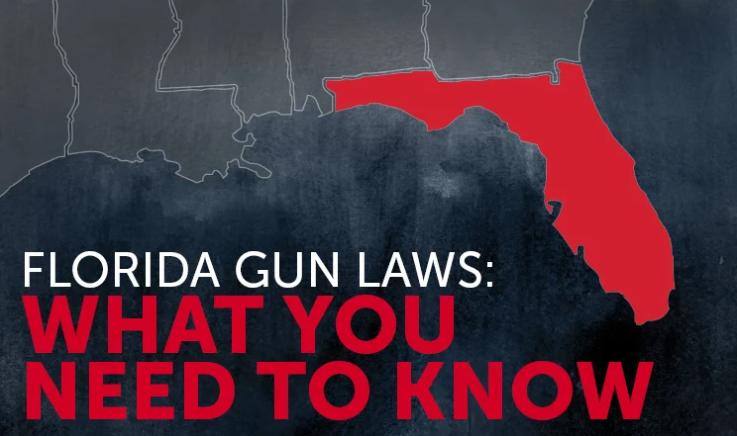 Pin On State Gun Laws