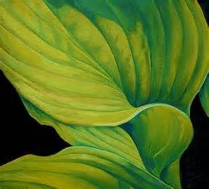 hosta leaf - Bing Images