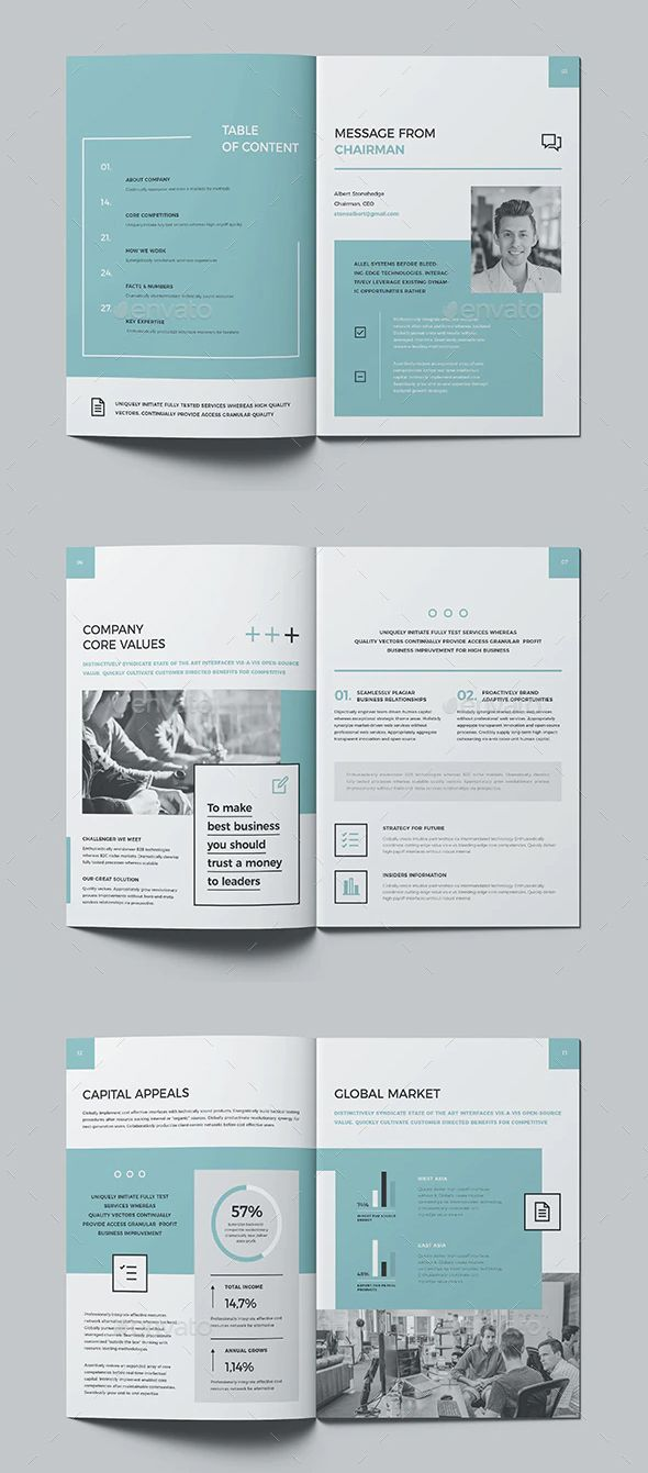 Professional Annual Report Template INDD