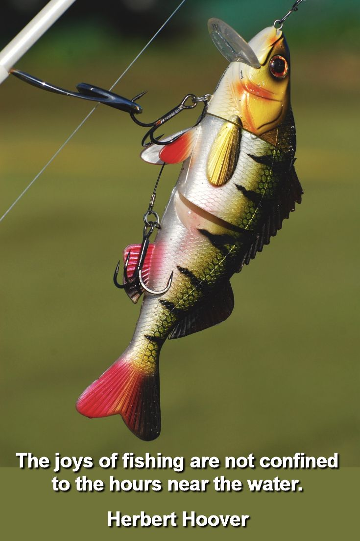 Largemouth Bass Fishing Lures