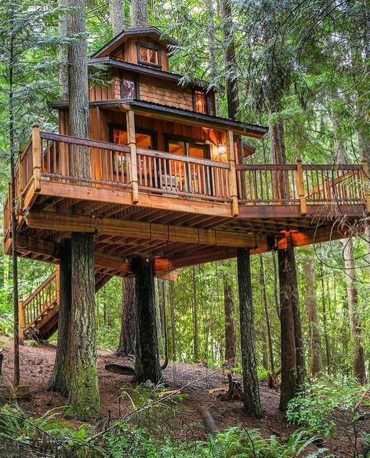 Luxury Tree Houses Designs: DIY Tree House Ideas & How To Build A Treehouse (For Your