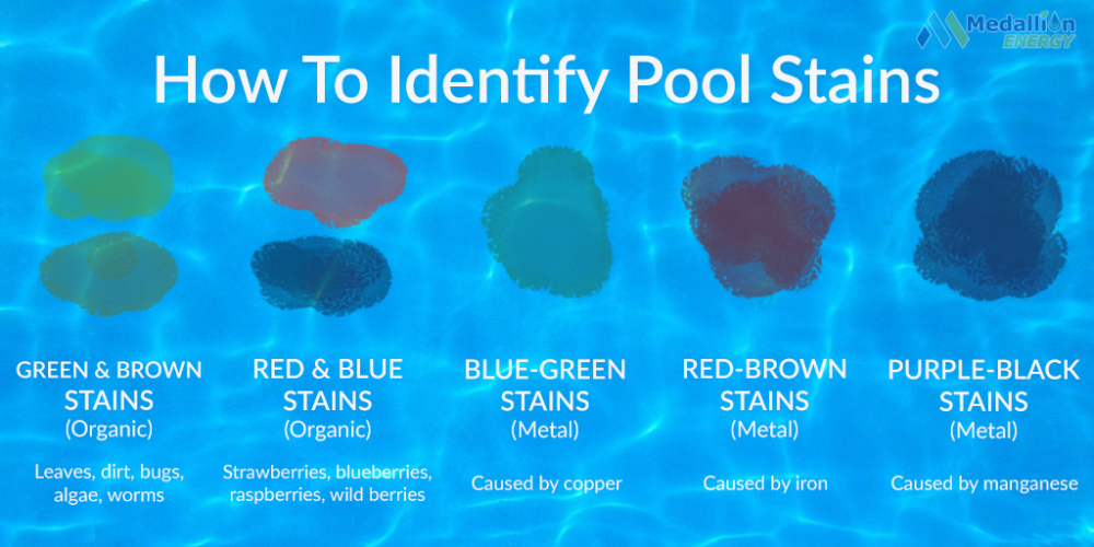 Pool Stain Removal 101 A Quick Guide To Removing Pool Stains In 2020 Pool Stains Stain Remover Clean Rust Stains
