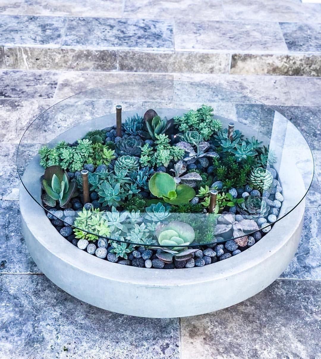 22 Modern Coffee Tables Designs Interesting Best Unique And Classy Garden Coffee Succulent Garden Design Plants