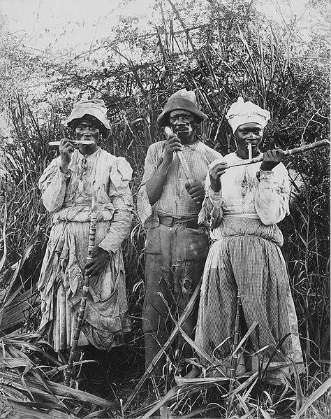 Unnamed cane cutters in Jamaica, 1880s