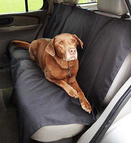 Amazonbasics Seat Cover For Pets Onestop Petshop Com Seat Cover Pets Dogs Dog Car Seat Cover Pet Seat Covers Dog Seat Covers