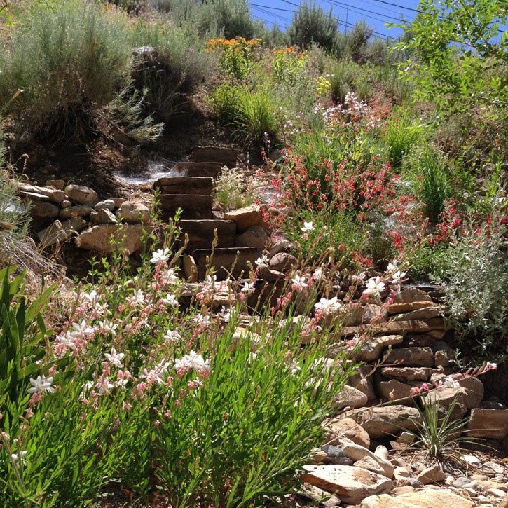Wasatch slope transformation in Salt Lake City where ...