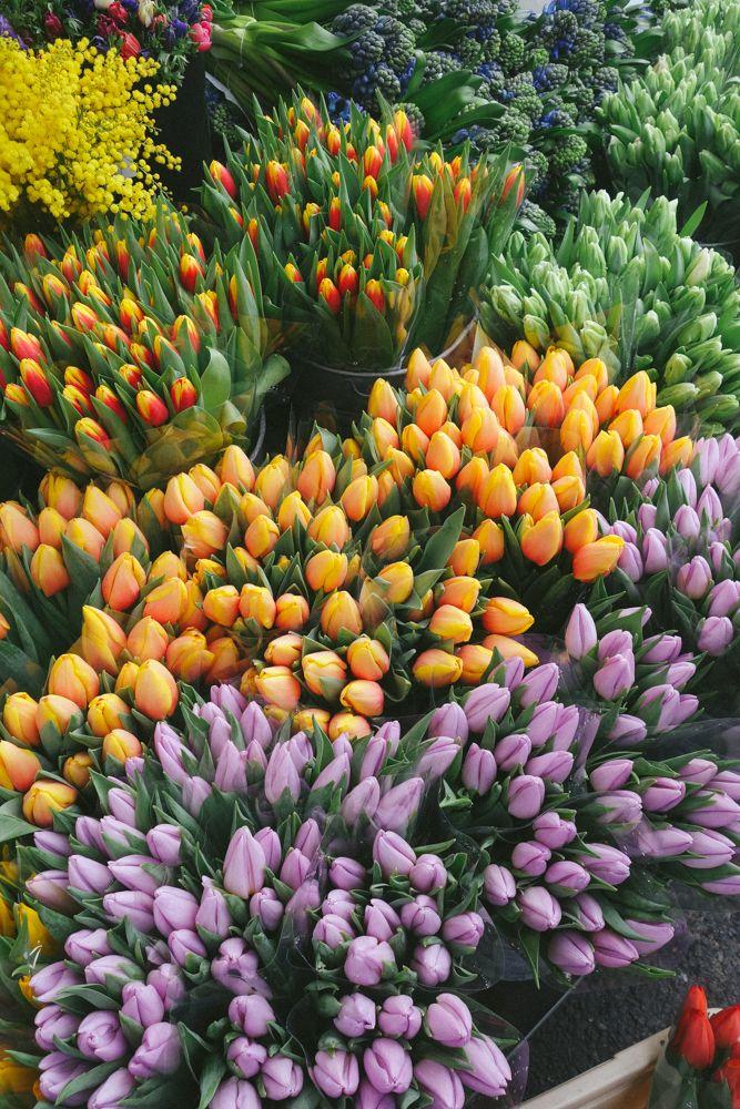Flower Market Sundays The Londoner Amazing Flowers Flower Aesthetic Flower Market