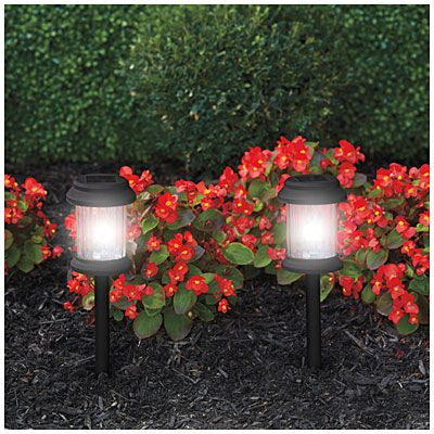 Wilson Fisher Black Led Solar 10 Piece Pathway Light Set With Images Solar Path Lights Path Lights Patio Lighting