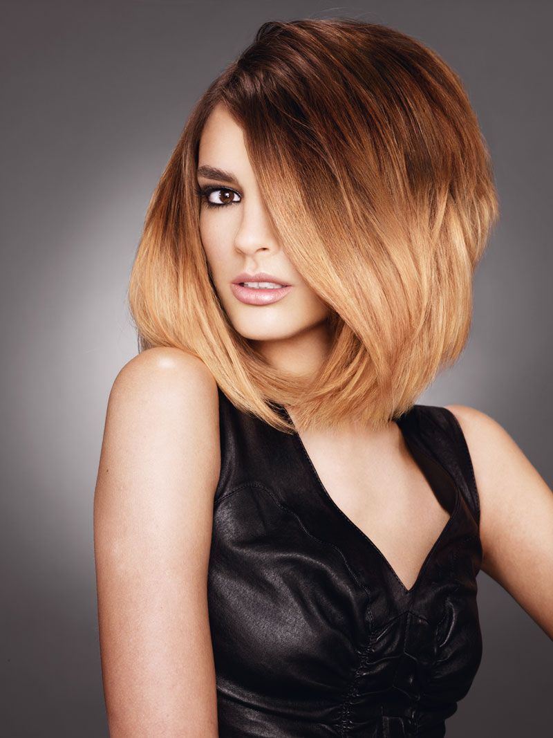 Do it yourself at home ombre hair color kit loral paris fria do it yourself at home ombre hair color kit loral paris fria wild solutioingenieria Image collections